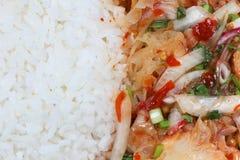Salada de frango grelhada picante Fotografia de Stock Royalty Free