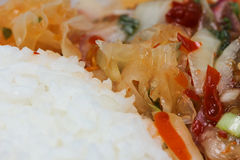 Salada de frango grelhada picante Fotografia de Stock