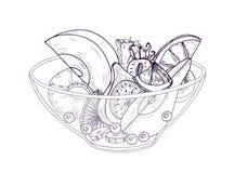 Salada de fruto na mão da bacia tirada com linhas de contorno pretas no fundo branco A refeição deliciosa fez de fresco desbastad ilustração do vetor