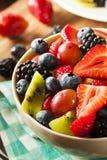 Salada de fruto orgânica de Heallthy Foto de Stock