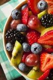 Salada de fruto orgânica de Heallthy Fotografia de Stock Royalty Free