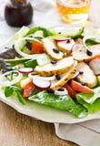 Salada de galinha com maçã Imagens de Stock Royalty Free