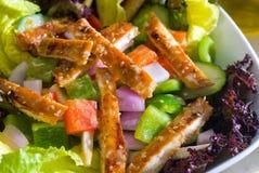 Salada de galinha do sésamo Imagem de Stock