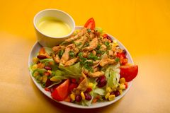Salada de galinha misturada fotografia de stock royalty free