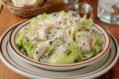 Salada de galinha saudável Fotos de Stock