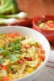 Salada de massa com carne e pimenta da galinha Fotos de Stock