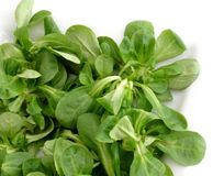 Salada de milho Fotografia de Stock Royalty Free