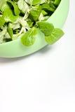 Salada de milho verde Imagem de Stock