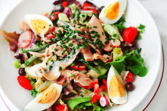 Salada de Nicoise Fotografia de Stock Royalty Free