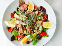 Salada de Nicoise Imagem de Stock
