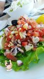 Salada de Octoppus Foto de Stock Royalty Free
