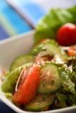 Salada de Provansial Fotografia de Stock