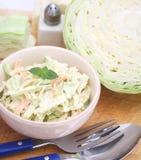Salada de repolho imagens de stock royalty free