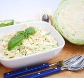 Salada de repolho fotografia de stock