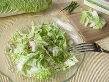 Salada de repolho chinês fotografia de stock