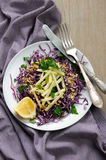 Salada de repolho e maçã vermelhas da salada Imagem de Stock Royalty Free