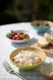 Salada de repolho e piquenique fotos de stock