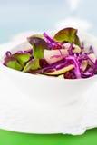 Salada de repolho vermelho Fotografia de Stock