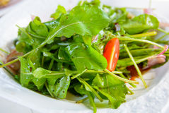 Salada de Rocket Imagens de Stock
