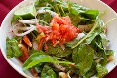 Salada de Rocket, alimento libanês. Imagem de Stock