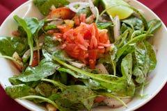 Salada de Rocket, alimento libanês. Fotos de Stock Royalty Free