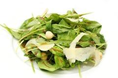 Salada de Rocket com queijo Imagens de Stock Royalty Free
