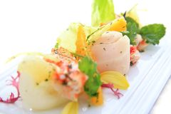 Salada de Scallop Fotos de Stock Royalty Free