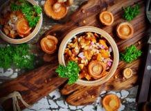 Salada de tampões frescos do leite do açafrão Imagem de Stock Royalty Free