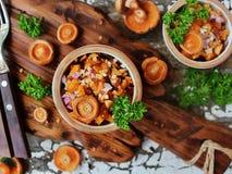 Salada de tampões frescos do leite do açafrão Fotografia de Stock Royalty Free