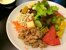 Salada de Tunna Foto de Stock Royalty Free