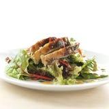Salada de Turquia Imagem de Stock