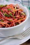 Salada de vegetais shredded Fotografia de Stock