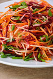 Salada de vegetais shredded Imagens de Stock Royalty Free