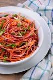 Salada de vegetais shredded Imagem de Stock