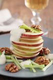 Salada de Waldorf Fotos de Stock Royalty Free
