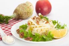 Salada de Waldorf com maçã, aipo e as nozes vermelhos Fotografia de Stock Royalty Free
