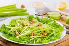 Salada de Waldorf com nozes, a maçã verde e o aipo Foto de Stock Royalty Free