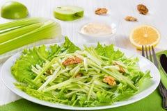 Salada de Waldorf com nozes, a maçã verde e o aipo Fotos de Stock
