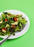 Salada deliciosa Imagens de Stock Royalty Free