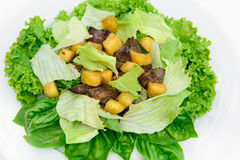 Salada deliciosa com carne Foto de Stock Royalty Free