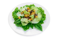 Salada deliciosa com carne Foto de Stock