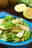 Salada do aipo, da pera e da noz Imagens de Stock