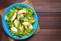 Salada do aipo, da pera e da noz Foto de Stock