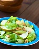 Salada do aipo, da pera e da noz Imagem de Stock Royalty Free