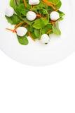 Salada do alimento dietético com as ervas frescas com mussarela imagens de stock
