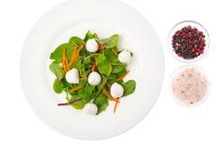 Salada do alimento dietético com as ervas frescas com mussarela imagem de stock royalty free