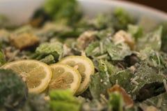 A salada do alimento imprensa o jantar da refeição da sobremesa Fotos de Stock