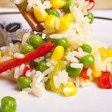 Salada do arroz Imagem de Stock