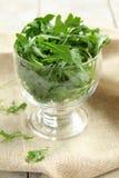 Salada do Arugula imagens de stock