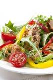 Salada do atum Fotografia de Stock